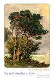 Eryck de Rubercy - La matière des arbres.