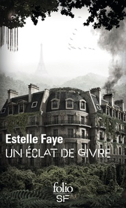 Estelle Faye - Un éclat de givre.