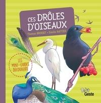 Estelle Rattier et Thomas Brosset - Ces drôles d'oiseaux.