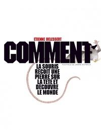 Etienne Delessert - Comment la souris reçoit une pierre sur la tête et découvre le monde.