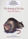 Eunice Chace Greene - The Anatomy of the Rat.