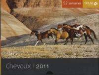 Eve Sivadjian - Chevaux 2011.