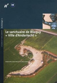 """Evelyne Gillet et Léonce Demarez - Le sanctuaire de Blicquy """"Ville d'Anderlecht"""" - Volume 1, Campagnes 1994-1996."""