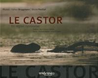 Le castor - En région lyonnaise.pdf