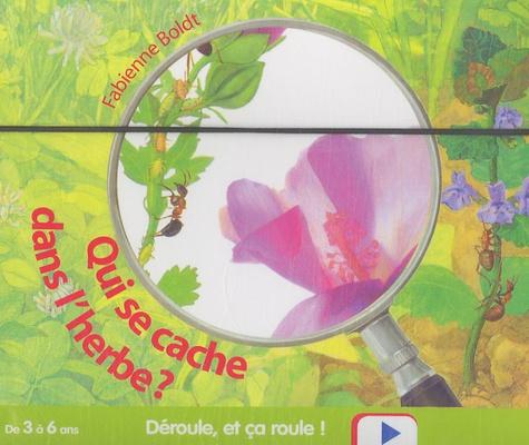 Fabienne Boldt - Qui se cache dans l'herbe ?.