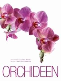 Fabio Petroni et Anna Maria Botticelli - Orchideen.