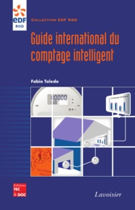 Fabio Toledo - Guide international du comptage intelligent.