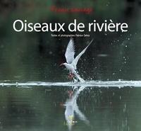 Fabrice Cahez - L'Allier - Rivière à plumes.