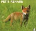 Fabrice Cahez - Petit renard.
