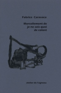 Fabrice Caravaca - Morcellement de je ne sais quoi de coloré.