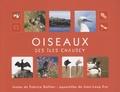 Fabrice Gallien - Oiseaux des îles Chausey.