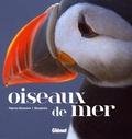 Fabrice Genevois - Oiseaux de mer.