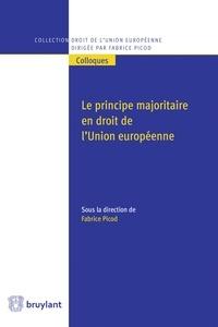 Birrascarampola.it Le principe majoritaire en droit de l'Union européenne Image