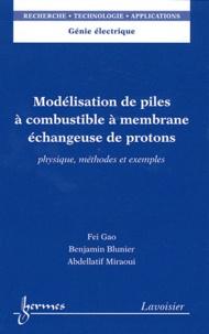 Modélisation de piles à combustible à membrane échangeuse de protons- Physique, méthodes et exemples - Fei Gao | Showmesound.org
