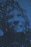 Felicity Scott - Acid Visions - L'architecture sous LSD.
