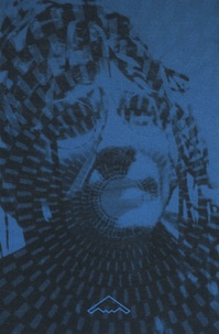 Rhonealpesinfo.fr Acid Visions - L'architecture sous LSD Image