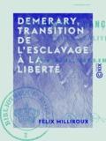 Félix Milliroux - Demerary, transition de l'esclavage à la liberté - Colonies françaises, future abolition.