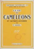 Fernand Angel et Jean Rostand - La vie des caméléons et autres lézards.