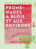 Fernand Bournon - Promenades à Blois et aux environs.