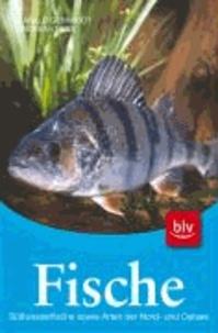 Fische - Süßwasserfische sowie Arten der Nord- und Ostsee.