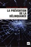 Eric Lenoir et Richard Bousquet - La prévention de la délinquance.