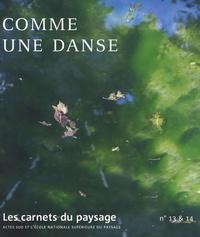 Jean-Luc Brisson - Les carnets du paysage N° 13 & 14 : Comme une danse. 1 DVD
