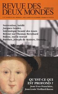 Jean-Yves Pranchère et Jean-Louis Vieillard-Baron - Revue des deux Mondes N° 2, Février 2009 : Qu'est-ce qui est profond ?.