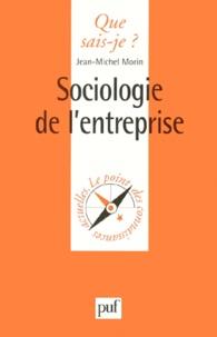 Jean-Michel Morin - Sociologie de l'entreprise.