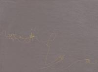 Florence Aigner et Laurent Van Lancker - Surya. 1 DVD