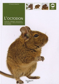 Lemememonde.fr L'Octodon - Anatomie, dressage, reproduction, alimentation, soins et traitements des maladies Image