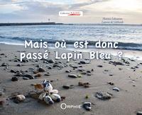 Florence Lebouteux - Mais où est donc passé Lapin Bleu ?.