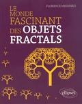 Florence Messineo - Le monde fascinant des objets fractals.