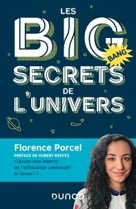 Télécharger depuis google books Les BIG secrets de l'univers en francais 9782100779802