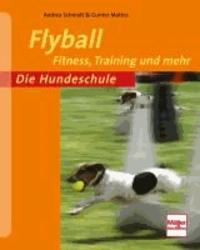Flyball - Fitness, Training und mehr.