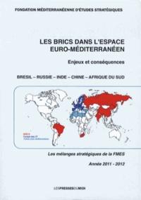 FMES - Les BRICS dans l'espace euro-méditerranéen - Enjeux et conséquences.