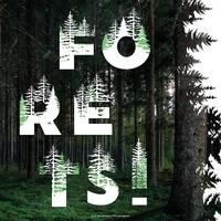 Alexandre Mare - Forêts !. Panorama de l'imaginaire sylvestre.