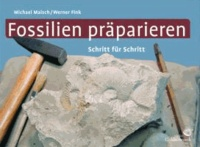 Fossilien präparieren - Schritt für Schritt.