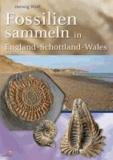 Fossilien sammeln in England - Schottland - Wales.