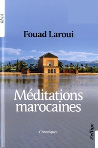 Fouad Laroui - Méditations marocaines.