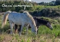 Francis Demange photographe - Cheval camarguais (Calendrier mural 2017 DIN A3 horizontal) - La beauté du cheval semi-sauvage (Calendrier mensuel, 14 Pages ).