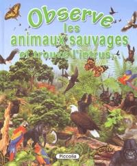 Francisco Arredondo - Observe les animaux sauvages - Et trouve l'intrus....