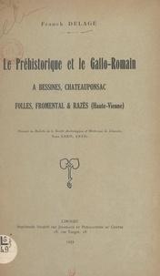 Franck Delage - Le préhistorique et le gallo-romain à Bessines, Châteauponsac, Folles, Fromental & Razès (Haute-Vienne).