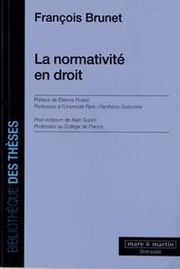 François Brunet - La normativité en droit.