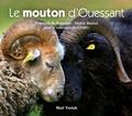 François de Beaulieu et Hervé Ronné - Le mouton d'Ouessant.
