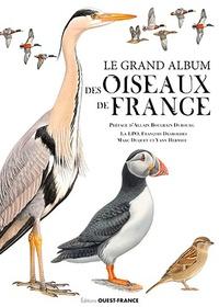 François Desbordes et Marc Duquet - Le grand album des oiseaux de France.