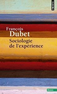 François Dubet - Sociologie de l'expérience.