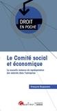 François Duquesne - Le comité social et économique - La nouvelle instance de représentation des salariés dans l'entreprise.