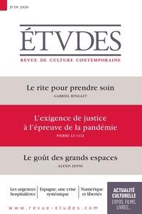 François Euvé - Etudes N° 4272, juin 2020 : Le rite pour prendre soin ; L'exigence de justice à l'épreuve de la pandémie ; Le goût des grands espaces.