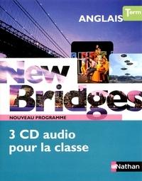 Birrascarampola.it Anglais Tle New Bridges B2 - Programme 2012 Image
