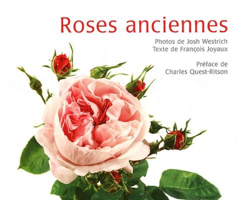 François Joyaux - Roses anciennes.